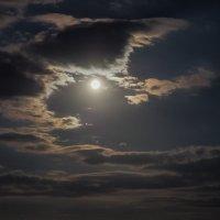 Лунная сонвта :: Валерий Гришин