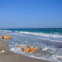 пляж Одесса :: Андрей Кураков
