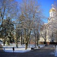 Морозное утро марта :: Леонид