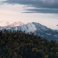 Утро в горах :: Александр Плеханов
