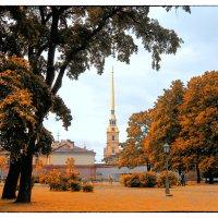 Осень 11 :: Цветков Виктор Васильевич