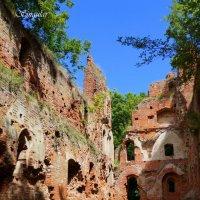 Бальга. На древних развалинах. :: Tatiana Golubinskaia