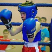 Бокс 2016 :: Юрий Рачек