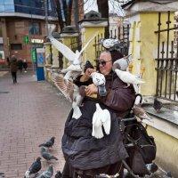 птицы мира :: Наталья Краснюк