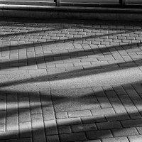 линии, формы... :: Александр Максимов