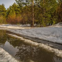 Весна :: Андрей Поляков