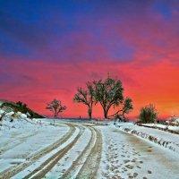 зимнее утро :: viton