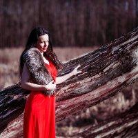 Холодная страсть зимы :: Анна Рыжковская (Егорова)