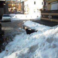 Пока  снег не растаял :: Mary Коллар