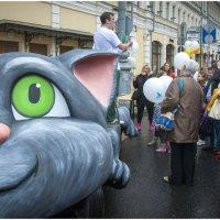 И такие бывают коты ..... :: Игорь Абламейко