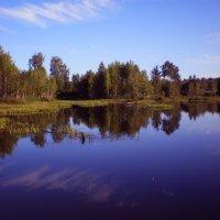 отражение.... :: александр дмитриев