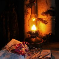 Вечер с лампой :: Сергей Чиняев