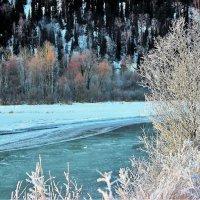 Зимнее утро на берегу реки :: Сергей Чиняев
