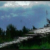 Лунная дорожка :: Виктор Никитенко