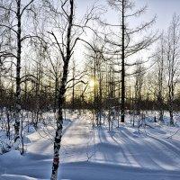 Зимний пейзаж :: Иван Перенец