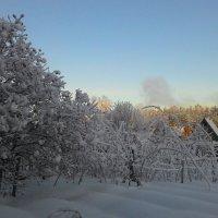 Дымят дачники :: Владимир Звягин