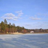 Солнечный март на пруду :: Лидия (naum.lidiya)