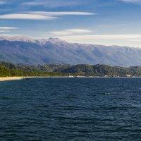 Черное, черное море :: catonbox