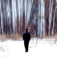 Вперед в сказочный лес :: Татьяна Губина