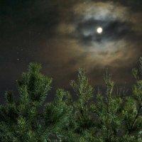 Взгляд с небес 2 :: вадим