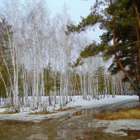 Весенние разливы. :: Мила Бовкун