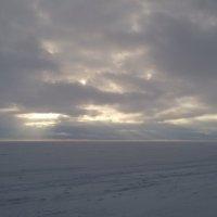 на Финском заливе :: Areana Alena