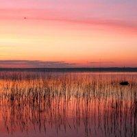 закат на озере :: геннадий щербак