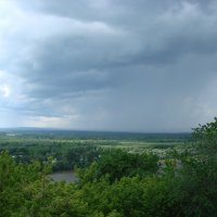 Дождь над лесом :: Сергей Тагиров