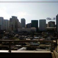 Вид на город :: maxim