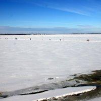 Северная Двина :: Светлана Ку