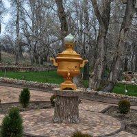 В парке Лога :: Marina Timoveewa