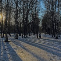 Весна в березовых аллеях :: Наталья Кузнецова