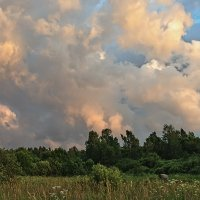 Над полями, над лесами :: Galina