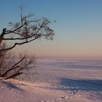 На озере. :: Галина .