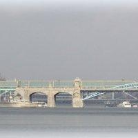 Пушкинский мост :: Отто Шельник