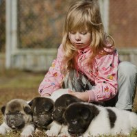 щенки и дети :: Ирина Сафонова