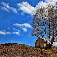 Домик в деревне :: Ольга Боронина (Белова)