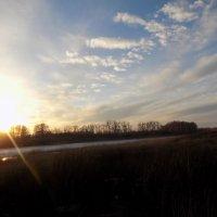 поле ,пруд,весна :: Максим Мальцев