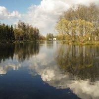 Зеркало природы :: Елена Пономарева