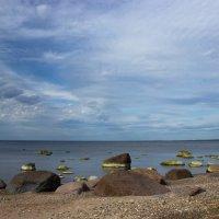 Балтика :: Nyuta H