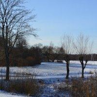 Ещё зима.. :: zoja
