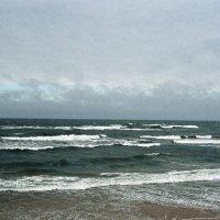 Балтика :: Саша Суфранс