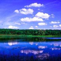 Краски лета. :: Валерий Гудков