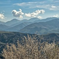 Нагорный Карабах :: Petr Popov