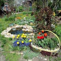 Весна в нашем саду! :: Светлана Масленникова