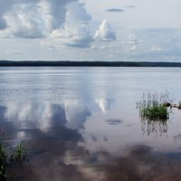 Июльское утро на северной реке :: Ирина Румянцева