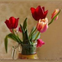 Я осторожно загляну в бокал цветка. :: Людмила Богданова (Скачко)