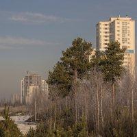 Город идёт. :: михаил суворов