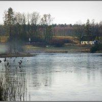 Дом у озера. :: Айвар Вилюмсон