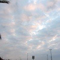 Облака :: Герович Лилия